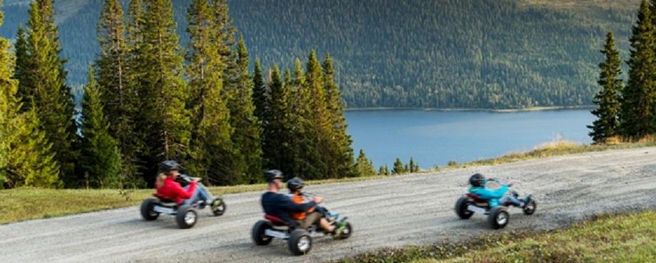 Mountain Cart för två Image